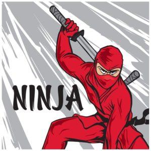 ninja-warrior-party-lunch-napkins-bx-90871