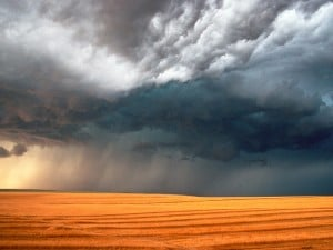 severe-weather-weather-250417_1600_1200